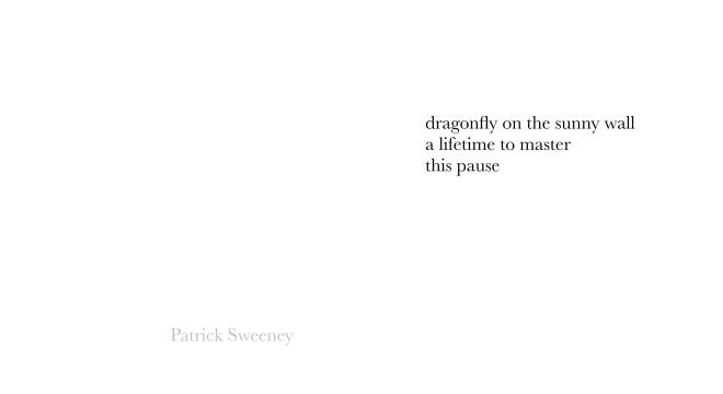 dragonfly-Sweeney.jpg